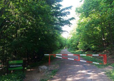 Lesní cesta Vranovská - začátek / konec u rozcestí Potoky