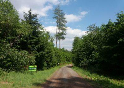 Lesní cesta Vranovská - začátek / konec u vranovské myslivny