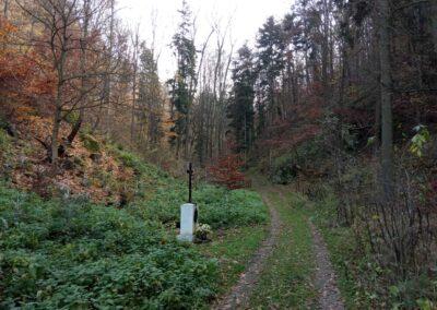 Lesní cesta Zrcadlová - křížek u Márovek
