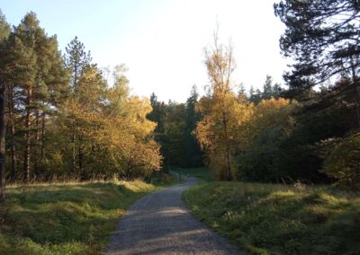 Palouk U Luže na podzim - pohled ze severu