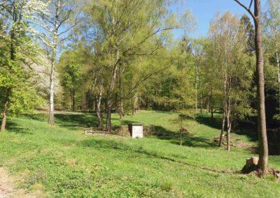 Lesní cesta Doubská - palouk U Srnce - pohled na studánku