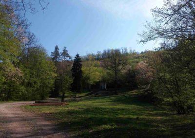 Pod Památníkem umučených lesníků