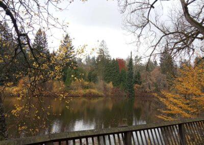 Podzimní arboretum ve Křtinách