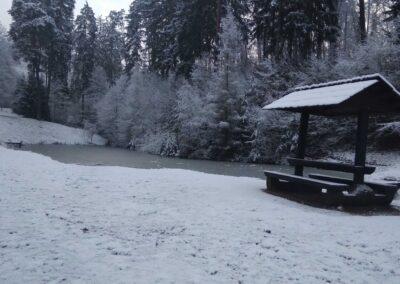 Retenční nádrž na Kuním potoce na lesní cestě Červená v zimě, autor Martin Šerák