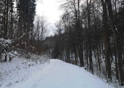 Rosenauerova cesta v zimě
