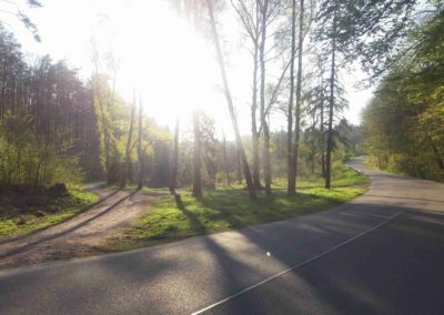 Rosenauerova cesta - pohled z východu od silnice na Babice