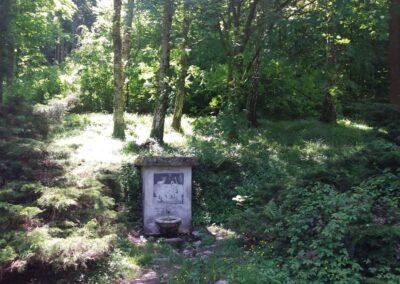 Studánka U Huberta při lesní cestě Hradská