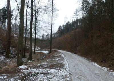 Údolí potoka Rakovec v zimě