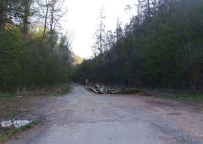 Začátek / konec lesní cesty Pod Jelencem mezi Adamovem a Bílovicemi nad Svitavou