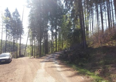 Západní začátek / konec lesní cesty Lámanka při lesní cestě Šíbrnka