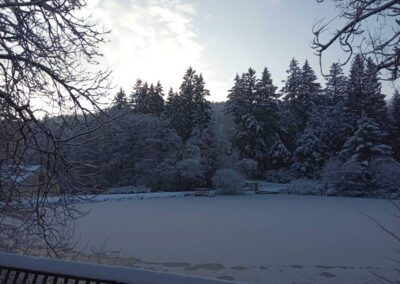 Zimní arboretum Křtiny