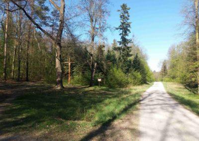 Zlámaný kříž u lesní cesty Brněnka